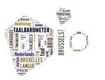Taaldiversiteit Brussel neemt nog steeds toe